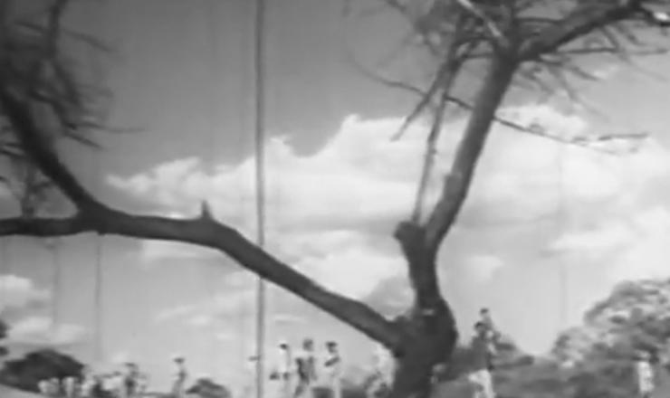 """Um dos resultados imediatos da seca de 1958 foi o aumento exponencial da migração de nordestinos para o sul do país. Trecho de """"O Brasil Precisa de Você: coletânea de filmes do IPES-IBAD (Seca no Nordeste)""""(1962/1963)"""