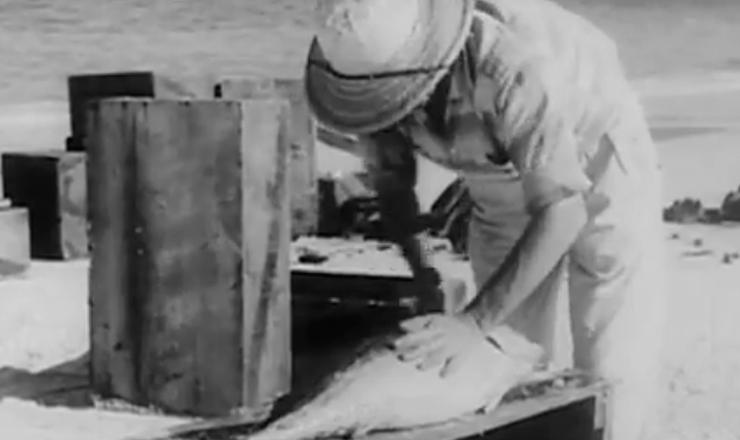 """O curta-metragem """"Arraial do Cabo"""", considerado um dos marcos do Cinema Novo, aborda a vida dos pescadores do arraial sob o prisma da crítica social. Trecho do filme """"Arraial do Cabo"""" (1959), de Paulo César Saraceni e Mário Carneiro"""