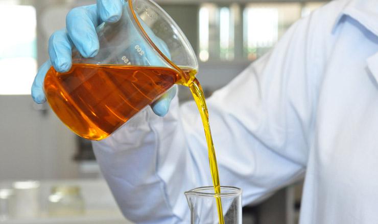 <strong> O óleo extraído da soja</strong> é um dos principais componentes do biodiesel