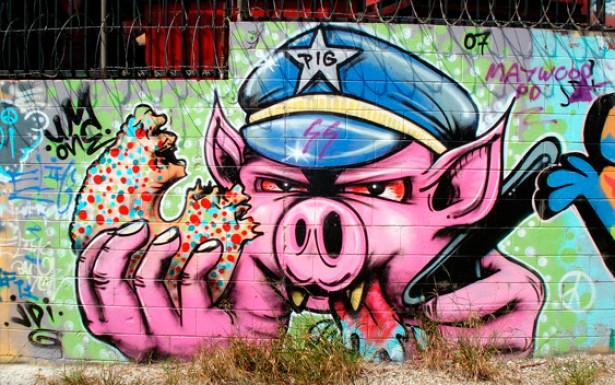 As criações do grafite, feitas com tinta em spray, rolinhos e pincel surgem como denúncias em espaços imprevisíveis da cidade: muros, pontes e calçadas