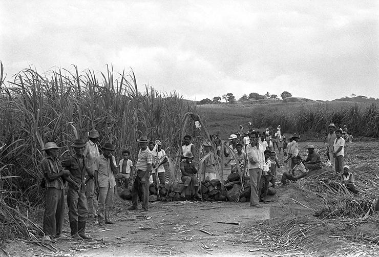 Em 1989, 250 mil canavieiros já haviam entrado em greve em Pernambuco por piso salarial